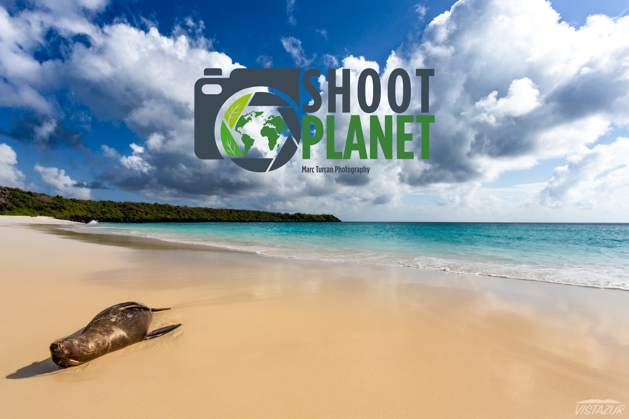Lion seal, Espanola Island, Galapagos
